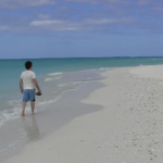 Caribbean Adventure on the Island of Providenciales